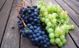 рекомендации по уходу за виноградом